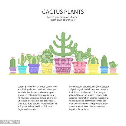 Designvorlage Mit Bunten Kakteen In Einem Topf Ikone Der Kaktusblute Stock Vektor Art Und Mehr Bilder Von Arizona 865797186