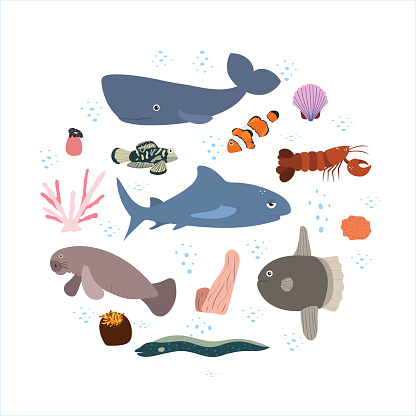 Design template with sea animal in circle for kid  print. Round composition of  marine animals, sperm whale, shark and manatees, fish, lobster.
