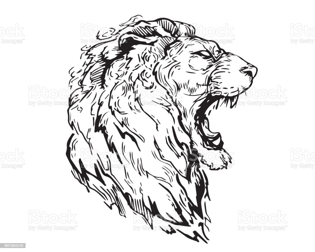 detail realistic hand drawing angry lion head illustration stock vector art more images of. Black Bedroom Furniture Sets. Home Design Ideas