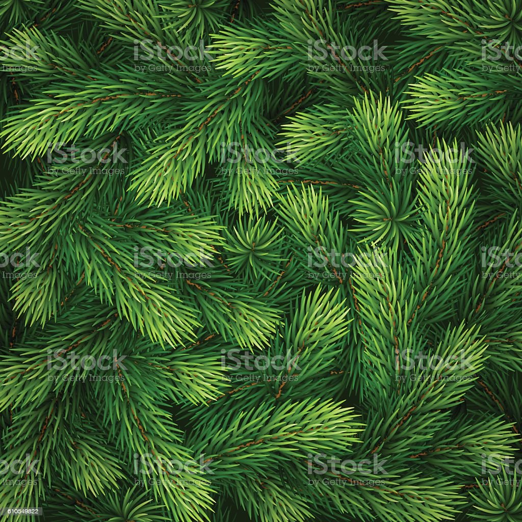 Detailed Christmas tree branches background vector art illustration
