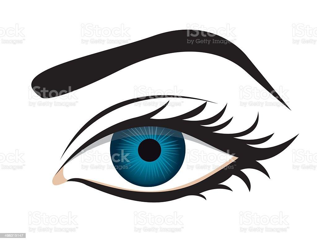 detailed eye lashes and eyebrow vector art illustration