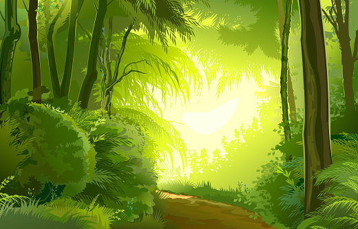 Detailed forest landscape. Road. Vector background image. Beautiful summer or spring scenery, european trees, tropical plants jungle. Detail illustration of scene: view on sun light in green foliage