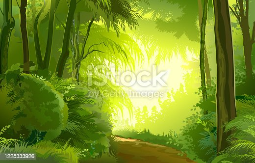 istock Detailed forest landscape. Road. Vector background image. Beautiful summer or spring scenery, european trees, tropical plants jungle. Detail illustration of scene: view on sun light in green foliage 1225333926