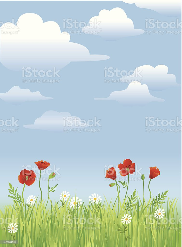 Detailed grass and flowers royalty-free stock vector art