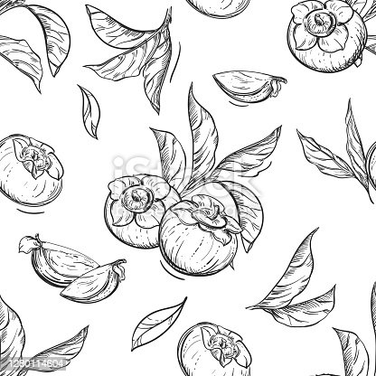 Detailed hand drawn black and white illustration seamless pattern of persimmon, date-plum, leaf. sketch. Vector. Elements in graphic style label, card, sticker, menu, package