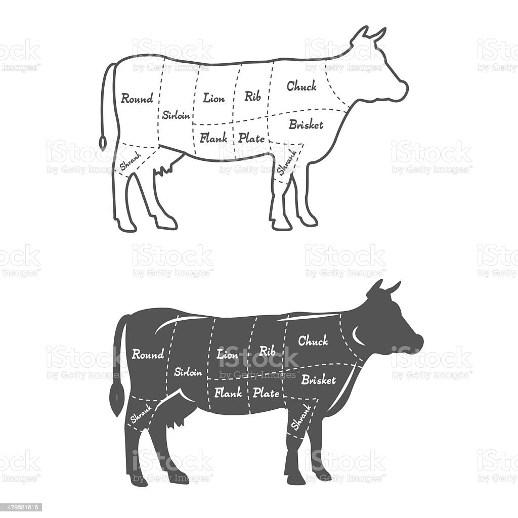 Detailed Illustration Diagram Scheme Or Chart American Cut Of Beef ...