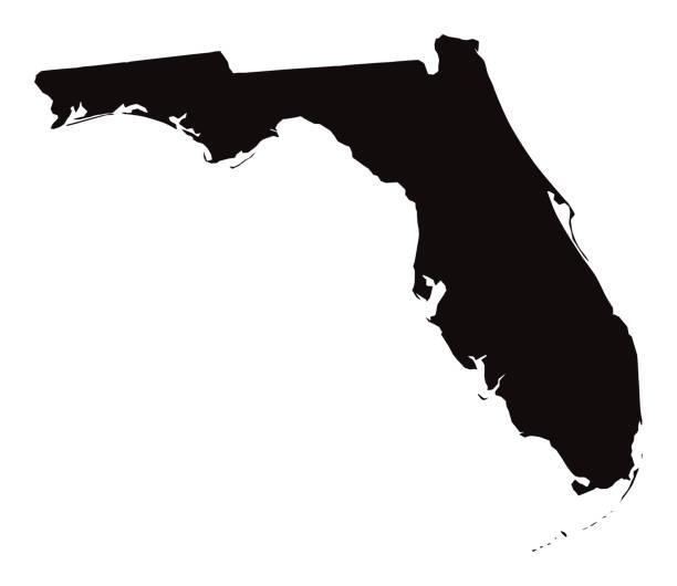 stockillustraties, clipart, cartoons en iconen met gedetailleerde kaart van florida state - zuid