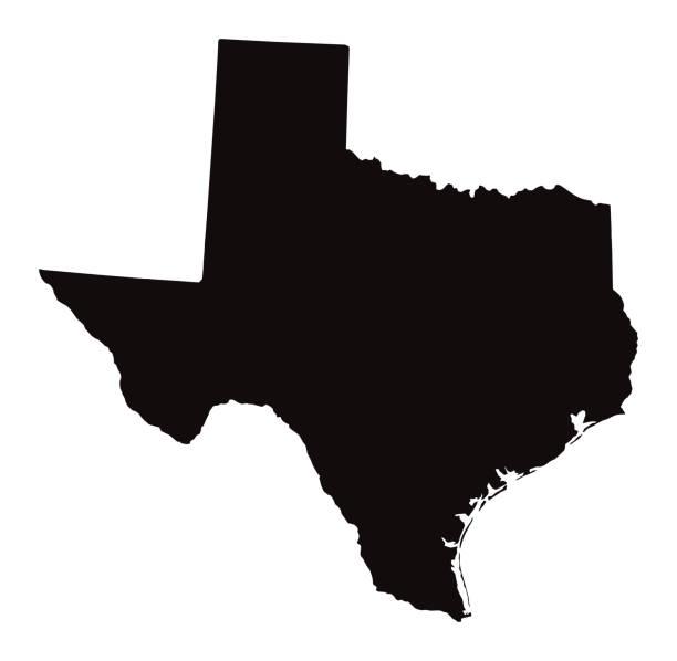 ilustraciones, imágenes clip art, dibujos animados e iconos de stock de mapa detallado del estado de texas - siluetas de mapas
