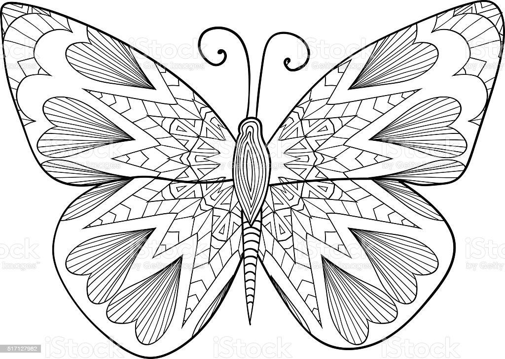 Ilustración de Tablero De Dibujo Ejemplar De Una Mariposa Nocturna ...