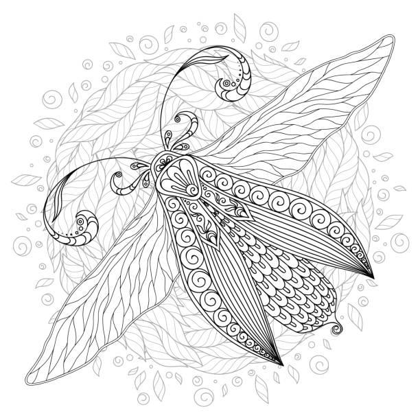 Detailed ornamental sketch of a moth vector art illustration
