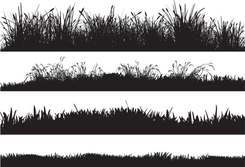 Silhouettes of highly detailed vector grass floors containing reeds, dry grass, high grass and low grass.