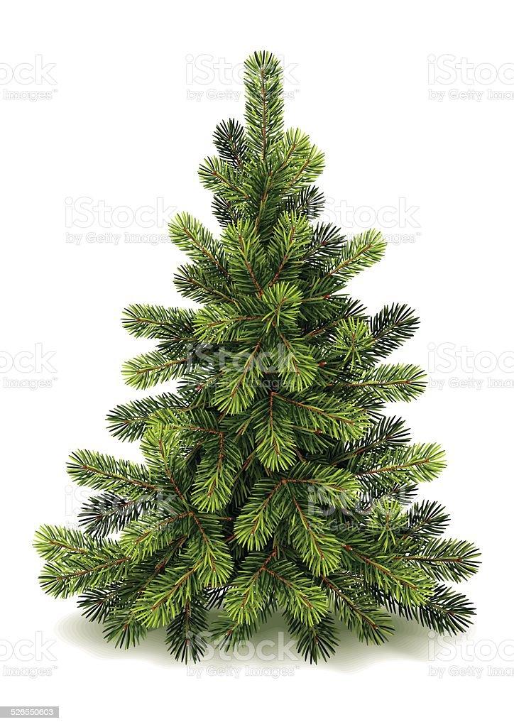 Detaillierte kleine Weihnachtsbaum – Vektorgrafik