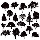 various black tree silhouettes