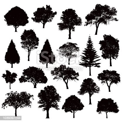 various black tree silhouettes