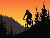 Silhouette of a downhill mountain biker in the trees. Bike can be separated from the ground.