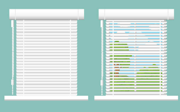ilustrações de stock, clip art, desenhos animados e ícones de detailed window set isolated vector illustration. architectural details, window treatments, interior elements. cartoon curtains, jalousie, drapery, blinds collection in flat style. window icon set - persiana caraterística arquitetural