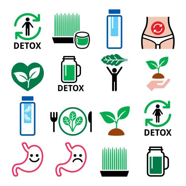 detox, körperreinigung mit säften, gemüse oder diät vektor icons set - stoffwechsel stock-grafiken, -clipart, -cartoons und -symbole
