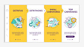 Detritus food chain onboarding vector template. Biological process. Detritivores and carnivores. Responsive mobile website with icons. Webpage walkthrough step screens. RGB color concept