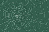 dew on a grid of concentric cobweb on a green background