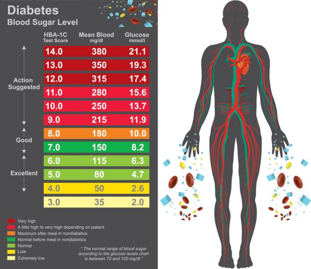 Diabetes chart. Health care info graphic. Vector design. Diabetes chart. Symptoms of high blood sugar include frequent urination, increased thirst, and increased hunger. Education info graphic. Vector design. carbohydrate biological molecule stock illustrations