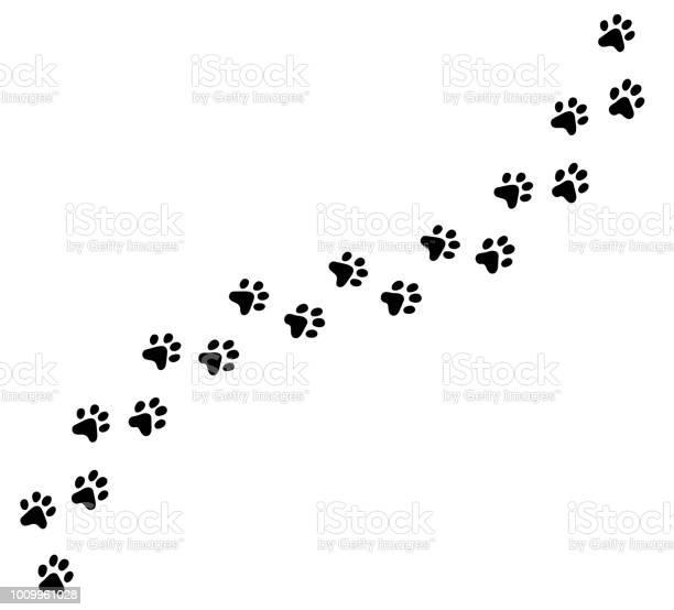 Diagonal vector cat kitten foot trail track print vector id1009961028?b=1&k=6&m=1009961028&s=612x612&h=epowtze8wed8ktqcw794dmxqnbw182gmxlbnlaodfw0=