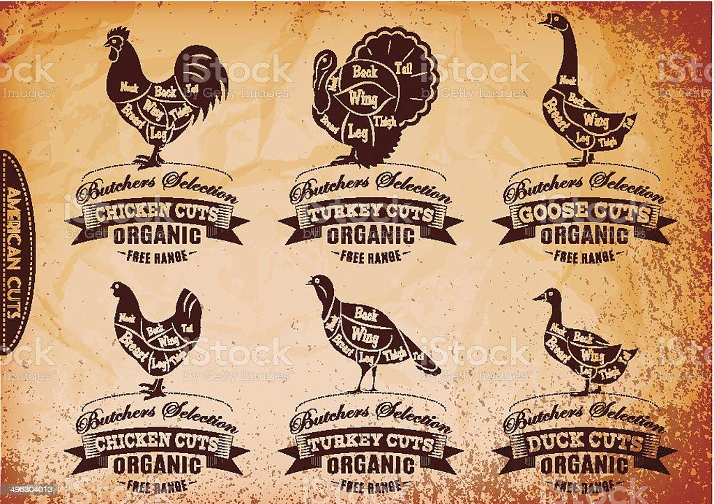 Ilustración de Diagrama Corte Cadáveres De Pollo Turquía Almohadas ...