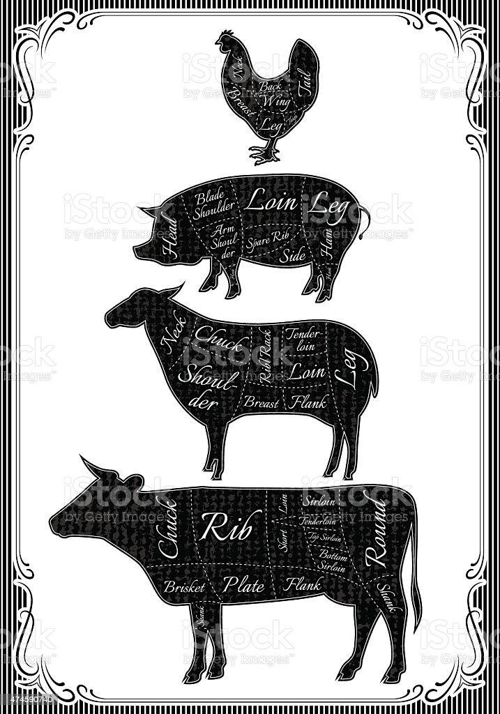 diagram cut carcasses of chicken, pig, cow, lamb vector art illustration