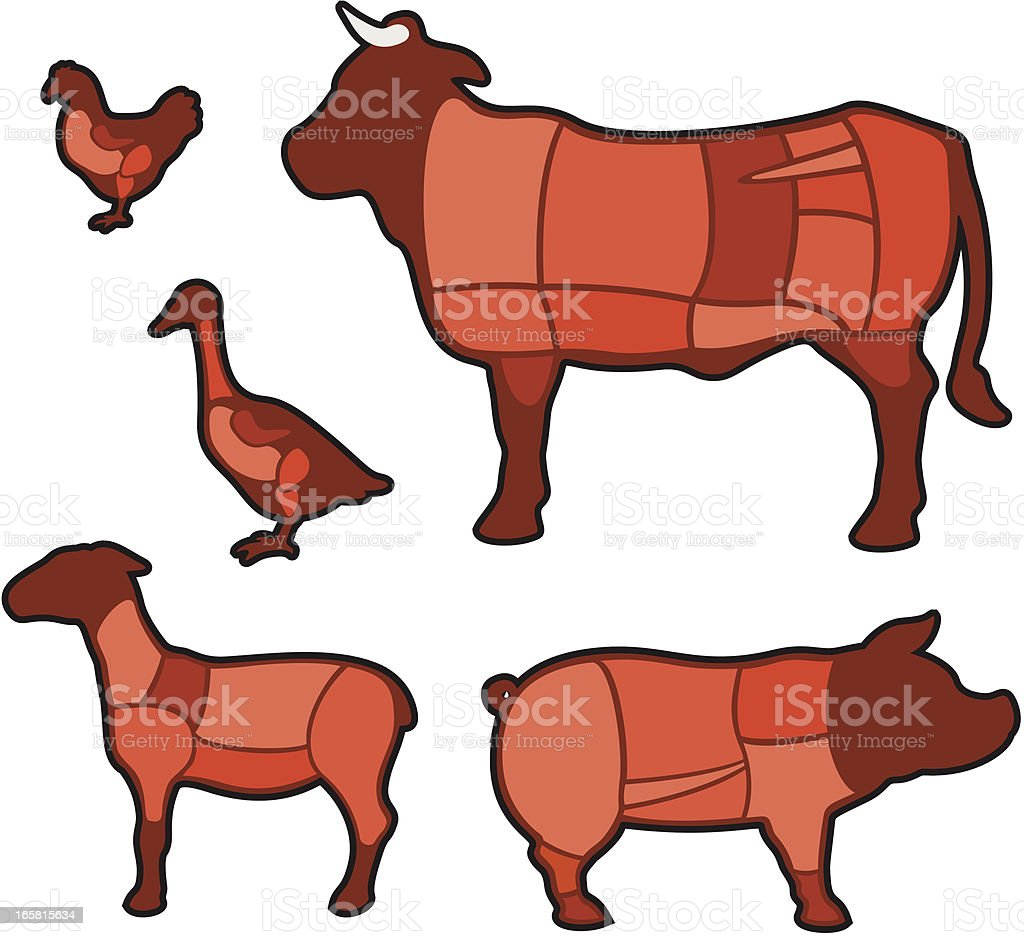 Diagram - cuts of meat vector art illustration