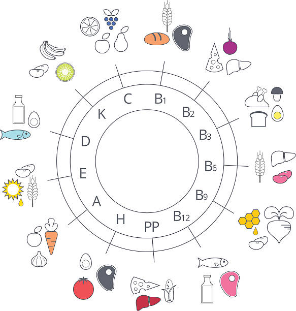 Royalty free vitamin a nutrient clip art vector images diagram food sources of vitamins vector art illustration ccuart Image collections