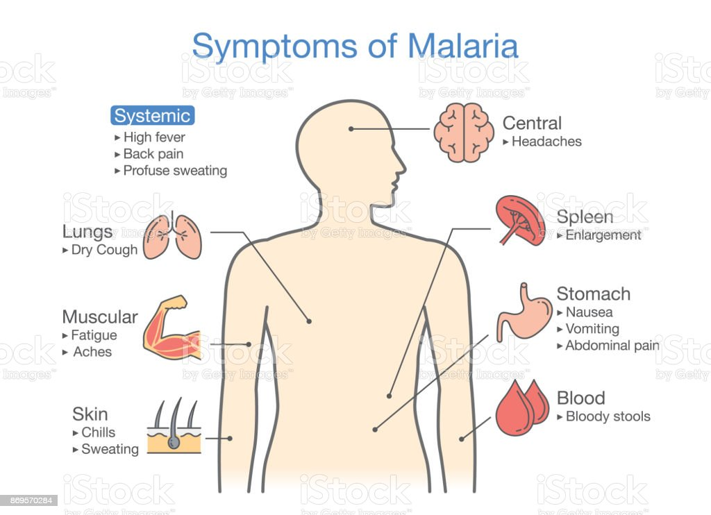 High free t3 symptoms malaria