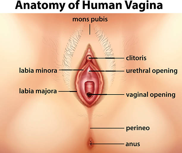 Vagina Tightening in Chennai