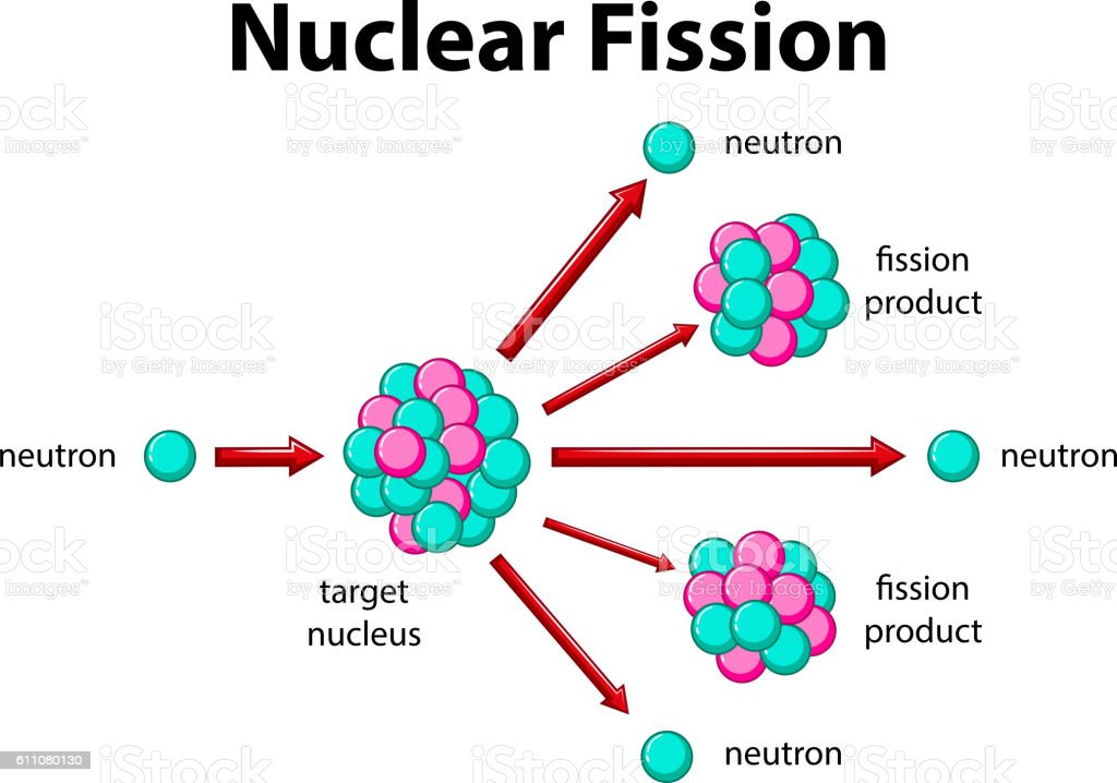 diagram showing nuclear fission stock vector art \u0026 more images of Nuclear Fission of Uranium 235 diagram showing nuclear fission royalty free diagram showing nuclear fission stock vector art \u0026amp;