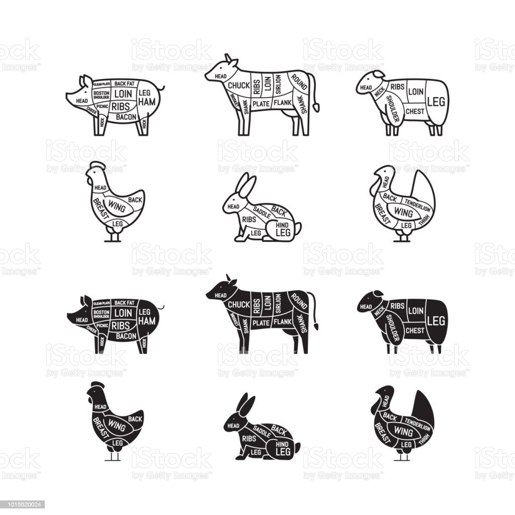 Diagrams For Butcher Shop Meat Cuts Animal Silhouette Pig Cow Lamb Chicken Diagram Stock Vector