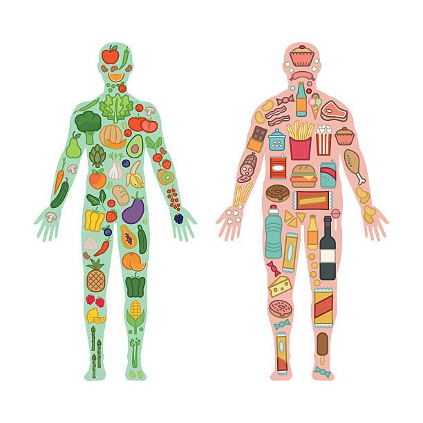 ilustraciones, imágenes clip art, dibujos animados e iconos de stock de dieta de comparación - comida chatarra