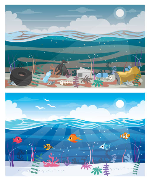 Difference Between Clean And Dirty Sea Difference Between Clean And Dirty Sea meer stock illustrations