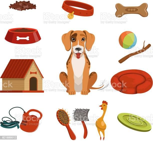 Different accessories for domestic pet dog in house vector set vector id821889512?b=1&k=6&m=821889512&s=612x612&h=xboumvnpc3zef8acbhfe3epc7uquuk5krbykam0yvqk=