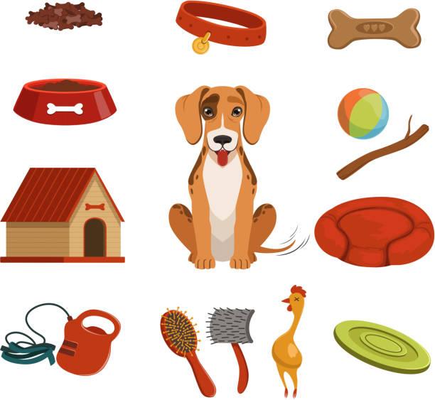ilustrações de stock, clip art, desenhos animados e ícones de different accessories for domestic pet. dog in house. vector illustrations set - dog food