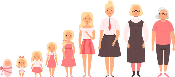 ilustrações de stock, clip art, desenhos animados e ícones de different ages. male and female babies children old growing humans mother and father vector peoples - idade humana