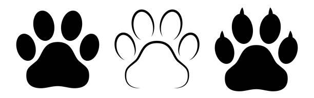 Different animal paw print vector illustrations Different animal paw print silhouette isolated vector illustrations paw stock illustrations