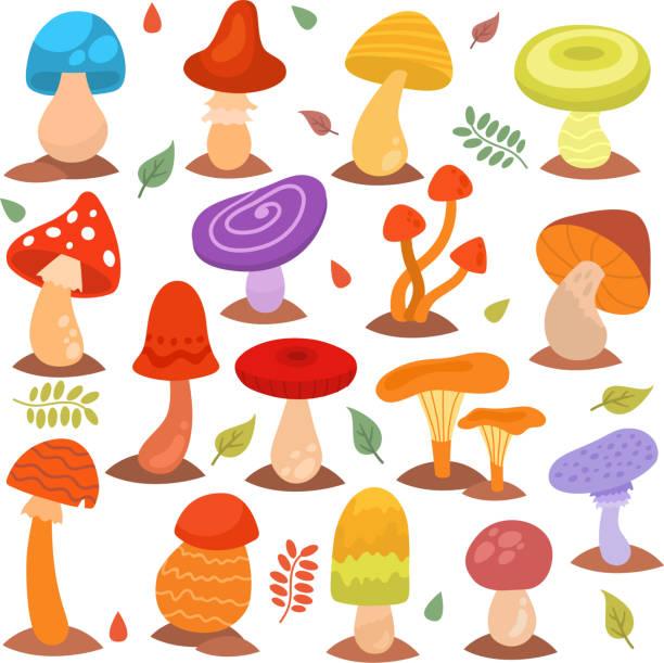 bildbanksillustrationer, clip art samt tecknat material och ikoner med olika tecknade svamp isolerad på vita naturen mat design collection svampen växt vektorillustration - höst plocka svamp