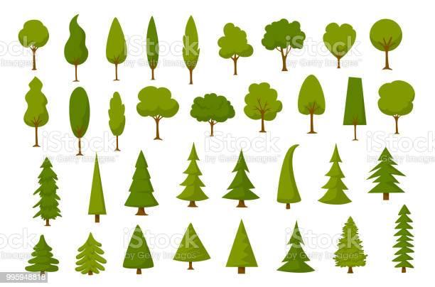 Different cartoon park forest pine fir trees set vector id995948818?b=1&k=6&m=995948818&s=612x612&h=dypbmmmtkwhrnwmz1sjl0cwkw7shq4fwoco cev52uk=