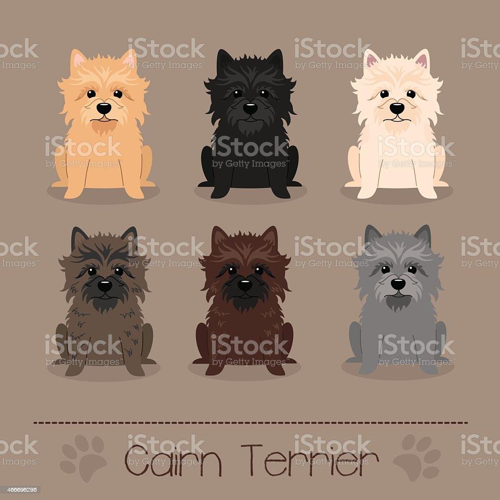 Different colors Cairn Terrier vector art illustration