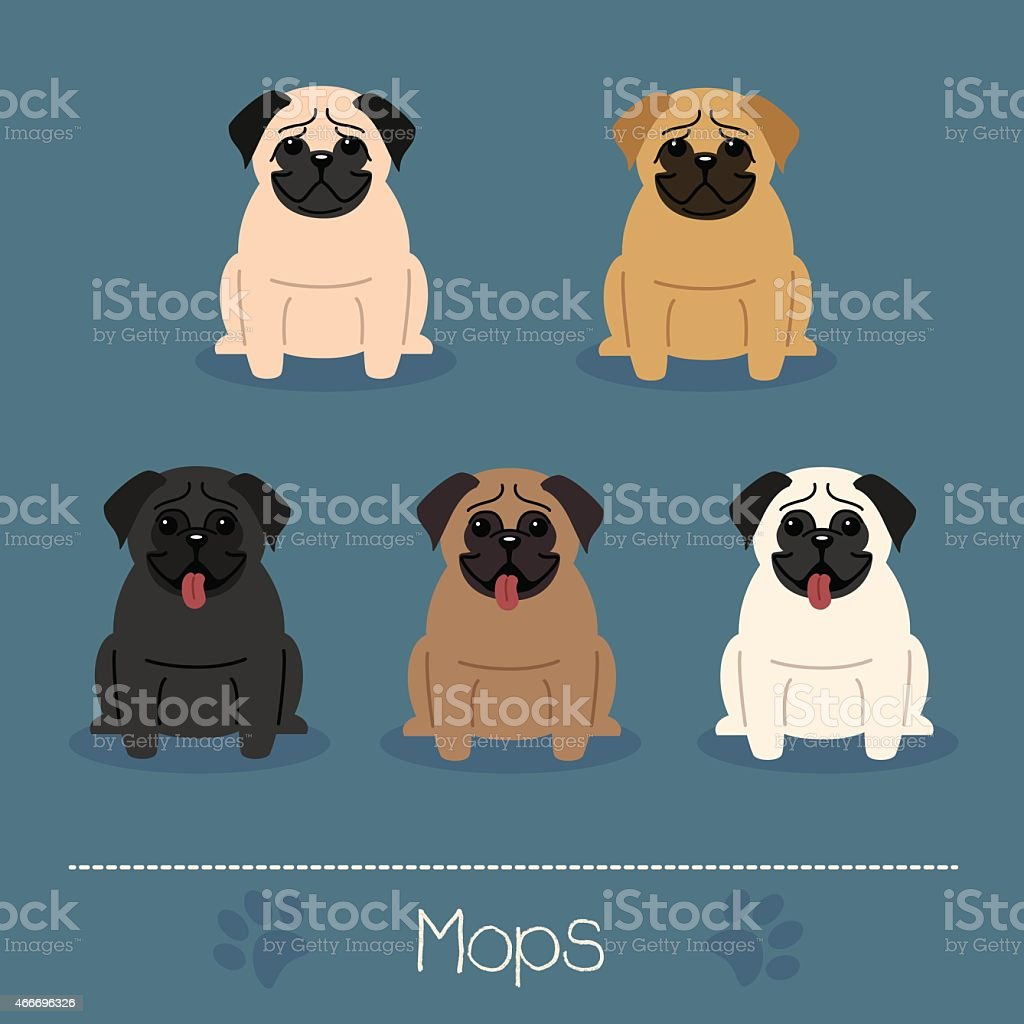 Different colors Mops vector art illustration