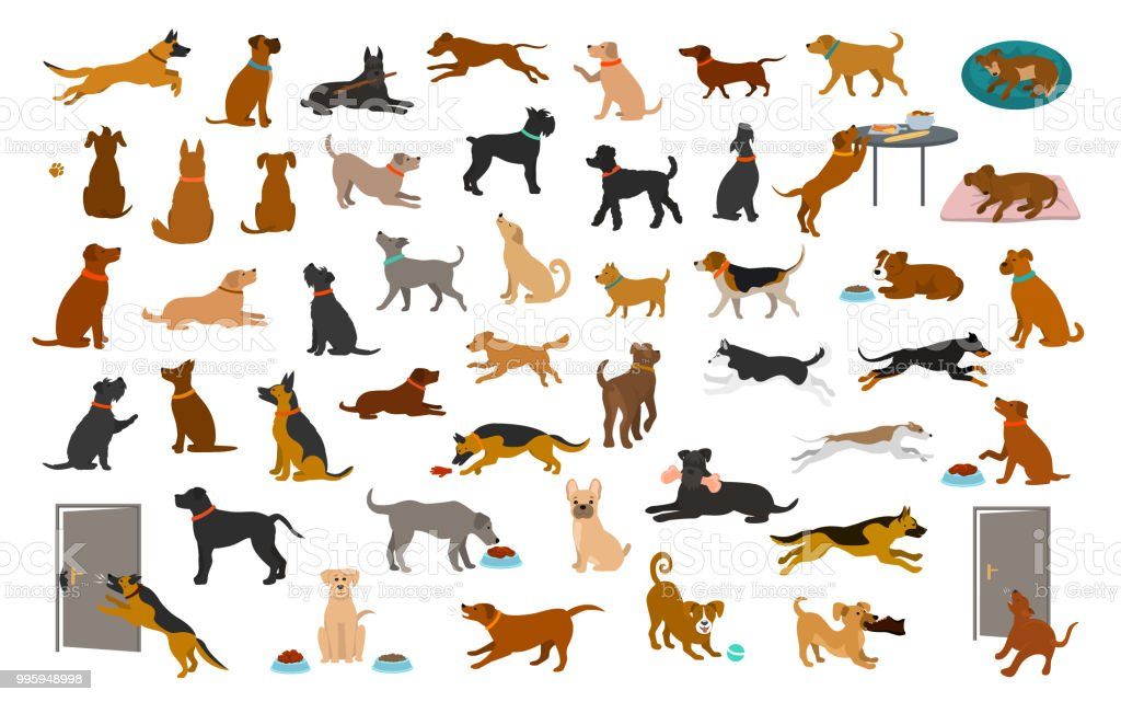 different dog breeds and mixed set, pets play running jumping eating sleeping, sit lay down and walk, steal food, bark, protect. vector art illustration
