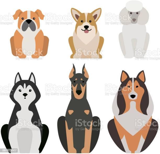 Different dogs breed isolated on white vector id597675502?b=1&k=6&m=597675502&s=612x612&h=w0owdf1tgckc2tkl6xoywyxpwxpytuzjnj85tfko1s8=