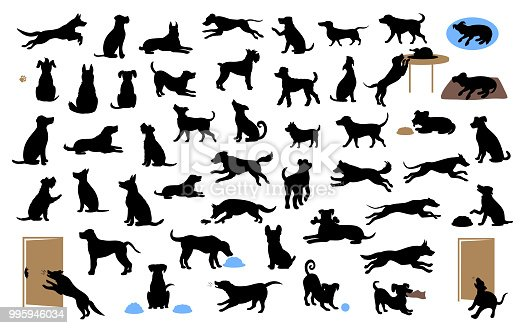 istock different dogs silhouettes set, pets walk, sit, play, eat, steal food, bark, protect run and jump, isolated vector illustration 995946034