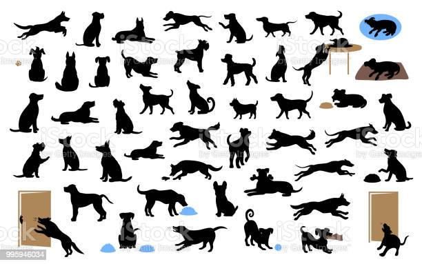 Different dogs silhouettes set pets walk sit play eat steal food bark vector id995946034?b=1&k=6&m=995946034&s=612x612&h=xoecpekdeqmlc7wid thl6v1tfh35lv2mcyn8worxga=