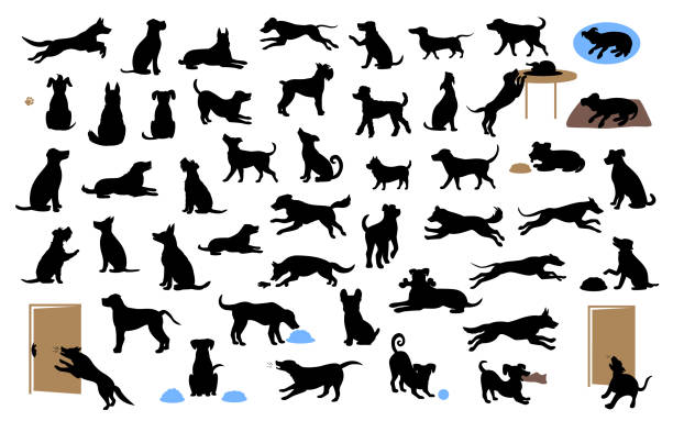 different dogs silhouettes set, pets walk, sit, play, eat, steal food, bark, protect run and jump, isolated vector illustration different dogs silhouettes set, pets walk, sit, play, eat, steal food, bark, protect run and jump, isolated vector illustration  over white background dog stock illustrations