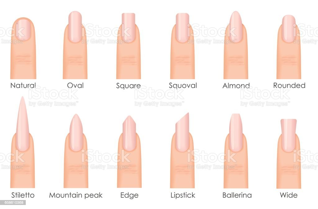 Different Fashion Nail Shapes Set Kinds Of Nails Fashion Nails Type ...