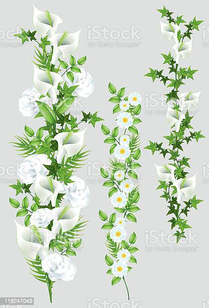 Different floral tendrils vector id119247043?b=1&k=6&m=119247043&s=612x612&h=vcy0nemaq0fxyf9hzlvabd4z7pfy5asdcbeyfupbmwg=